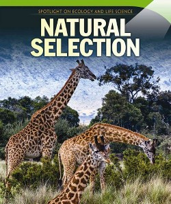 Natural Selection (Vol 0) (Paperback) (Joyce Mccormick)