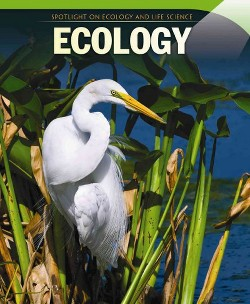 Ecology (Vol 0) (Paperback) (Omar Stone)