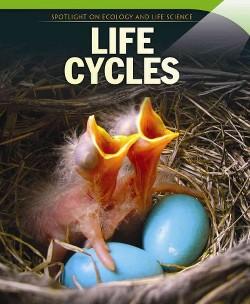 Life Cycles (Vol 0) (Paperback) (Linda Buellis)