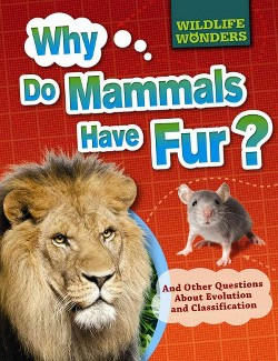 Why Do Mammals Have Fur? : And Other Questions About Evolution and Classification (Vol 0) (Paperback)