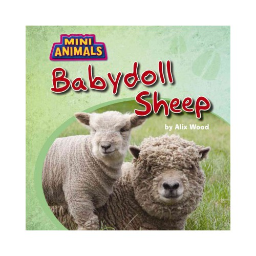 Babydoll Sheep (Vol 0) (Paperback) (Alix Wood)