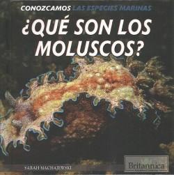 Qué son los moluscos?/ What Are Mollusks? (Vol 0) (Library) (Sarah Machajewski)