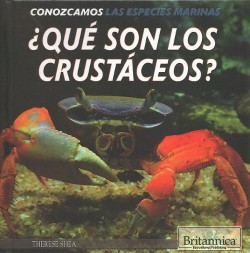 Qué son los crustáceos?/ What Are Crustaceans? (Vol 0) (Library) (Therese Shea)