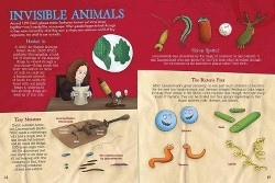 Tiny Killers : When Bacteria and Viruses Attack (Library) (John Farndon)