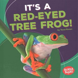 It's a Red-Eyed Tree Frog! (Library) (Tessa Kenan)