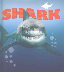 Sharks (Library) (Camilla de la Bedoyere)