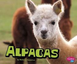 Alpacas (Library) (Michelle Hasselius)