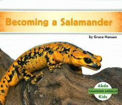 Becoming a Salamander (Library) (Grace Hansen)