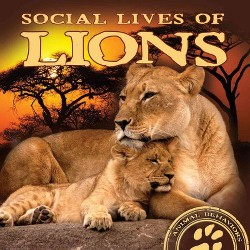 Social Lives of Lions (Library) (Elliot Riley)