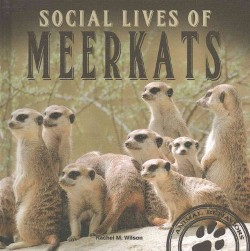 Social Lives of Meerkats (Library) (Rachel M. Wilson)