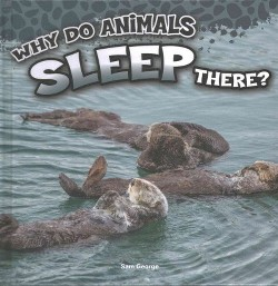 Why Do Animals Sleep There? (Library) (Sam George)