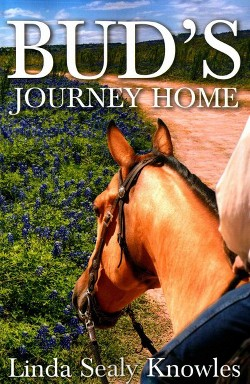 Bud's Journey Home (Paperback) (Linda Sealy Knowles)