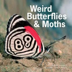 Weird Butterflies & Moths (Hardcover) (Ronald Orenstein)