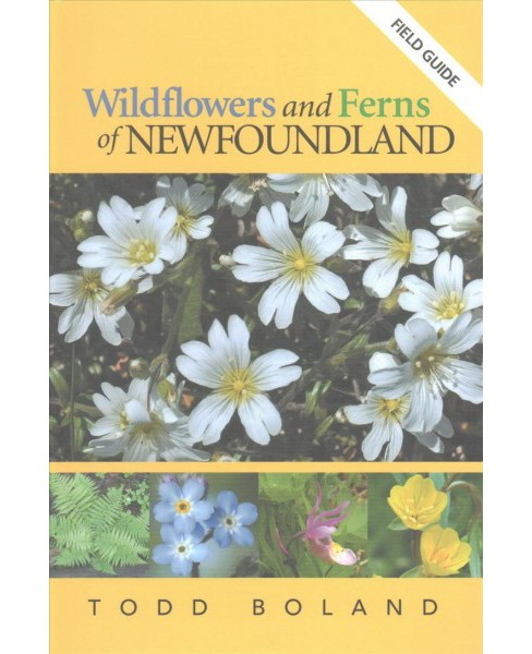 Wildflowers and Ferns of Newfoundland (Paperback) (Todd Boland) - image 1 of 1