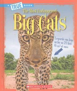 Big Cats (Library) (Katie Marsico)