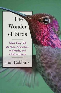 Wonder of Birds : What They Tell Us About Ourselves, the World, and a Better Future -  (Hardcover)