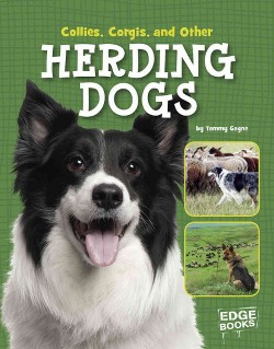 Collies, Corgies, and Other Herding Dogs (Library) (Tammy Gagne)