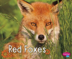Red Foxes (Library) (G. G. Lake)