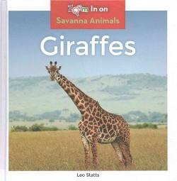 Giraffes (Library) (Leo Statts)