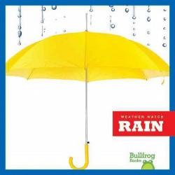 Rain (Library) (Jenny Fretland VanVoorst)