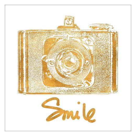 Target wall decor gold : Gold camera foil by jairo rodriguez unframed wall