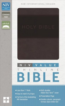 Holy Bible : New International Version, Gray/Black, Imitation Leather, Value Thinline (Paperback)