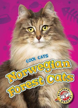 Norwegian Forest Cats (Library) (Domini Brown)
