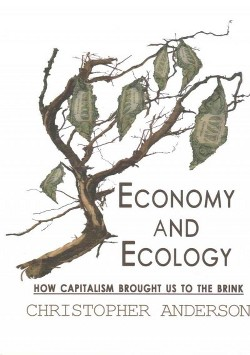 Economy and Ecology : How Capitalism Brought Us to the Brink (Paperback) (Christopher Anderson)