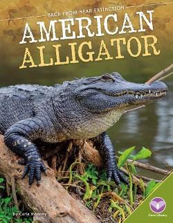 American Alligator (Library) (Carla Mooney)