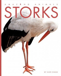 Storks (Library) (Kate Riggs)