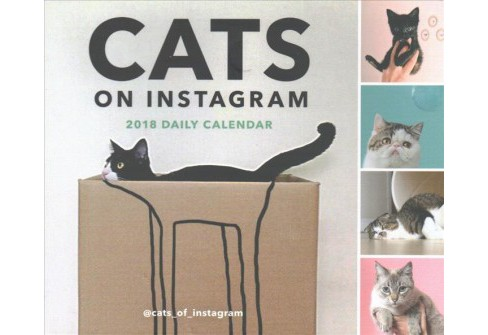 Cats on Instagram 2018 Calendar (Paperback) - image 1 of 1