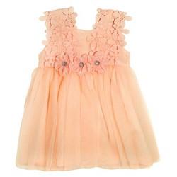 Baby Grand Signature Baby Girls' Mesh Overlay Chiffon Flower Dress - Peach