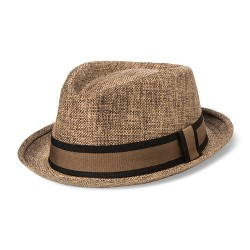 Bioworld® Men's Fedora With Band - Brown