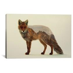 Mountain Fox by Andreas Lie Canvas Print