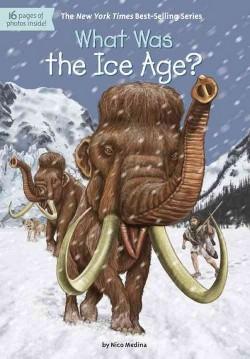 What Was the Ice Age? (Library) (Nicolas David Medina)
