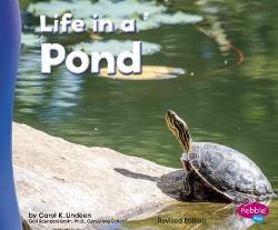 Life in a Pond (Revised) (Paperback) (Carol K. Lindeen)