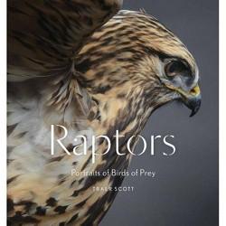 Raptors : Portraits of Birds of Prey (Hardcover) (Traer Scott)