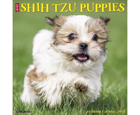 Just Shih Tzu Puppies 2018 Calendar (Paperback) - image 1 of 1
