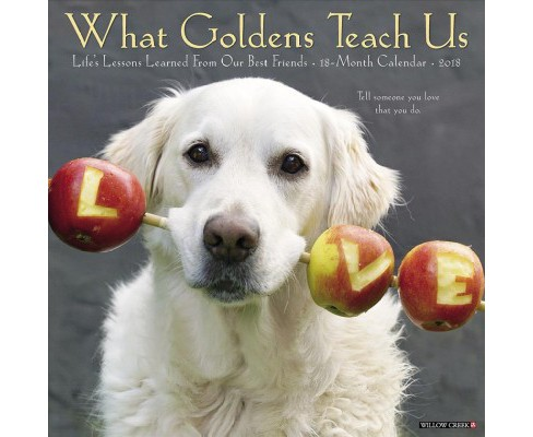 What Goldens Teach Us 2018 Calendar : Life's Lessons Learned from Our Best Friends (Paperback) - image 1 of 1
