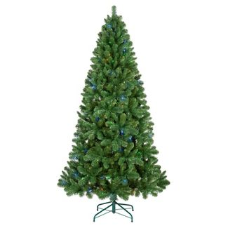 philips 7ft prelit full artificial christmas tree alberta spruce bicolor led lights - Christmas Tree White