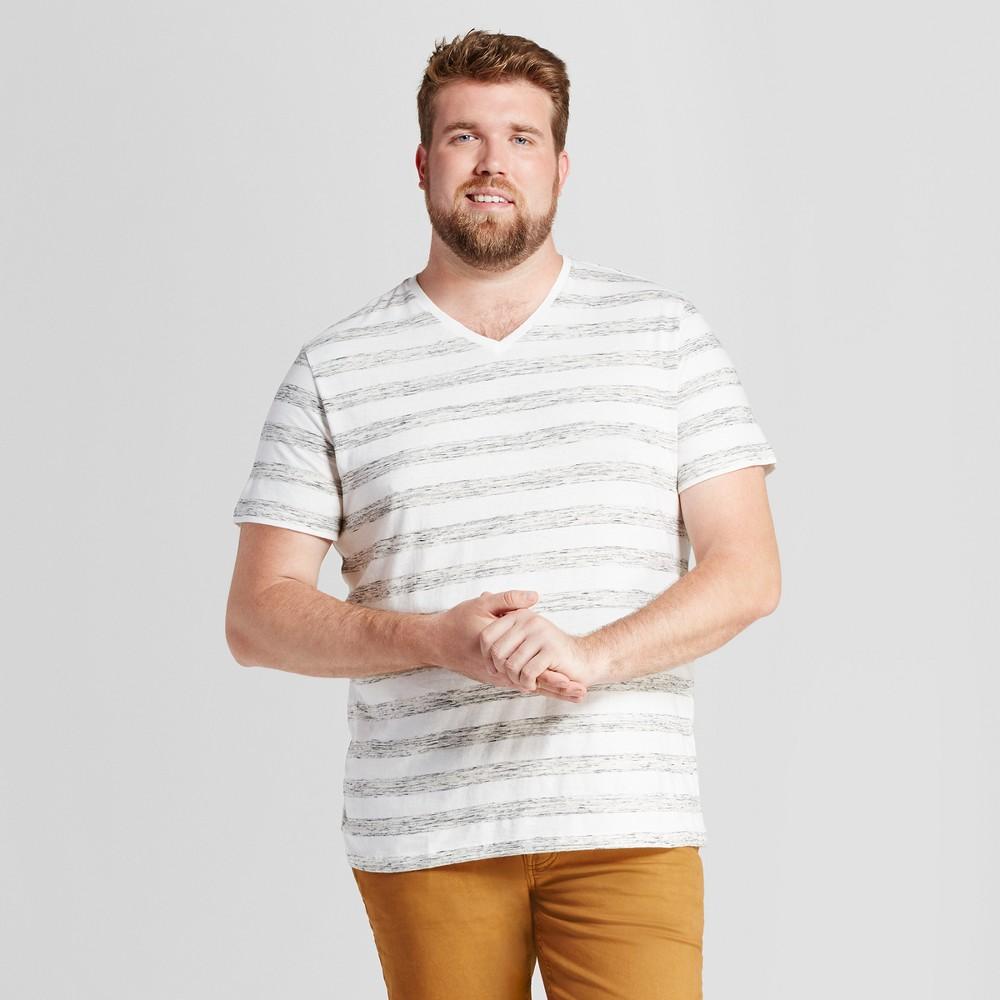 Mens Big & Tall Standard Fit Heathered Stripe Short Sleeve V-Neck T-Shirt - Goodfellow & Co White 3XBT