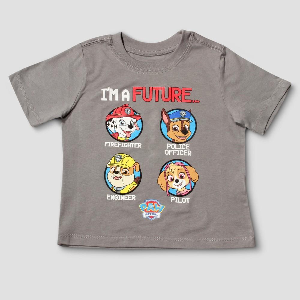 Toddler Boys Paw Patrol Short Sleeve T-Shirt - Gray 4T