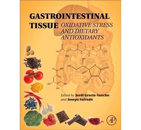 Gastrointestinal Tissue : Oxidative Stress and Dietary Antioxidants (Hardcover) - image 1 of 1