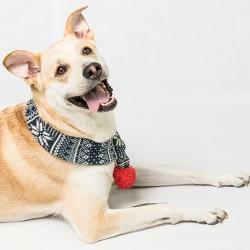 Wit & Delight Fairisle Scarf Dog Costume Accessories