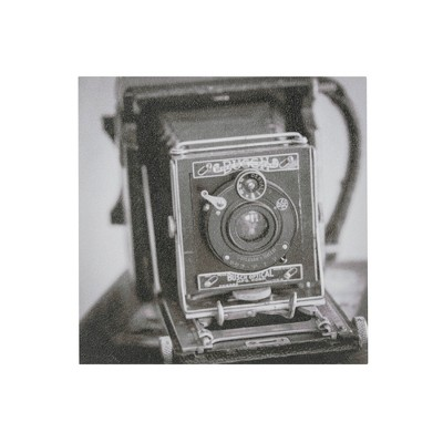 Vintage Camera Gel Coated Canvas Black/White 20 x20