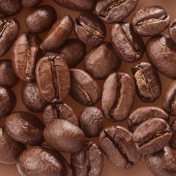 French Dark Roast Whole Bean Coffee - 12oz - Archer Farms™