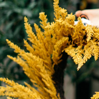 "22"" Artificial Goldenrod Wreath Yellow - Threshold™"