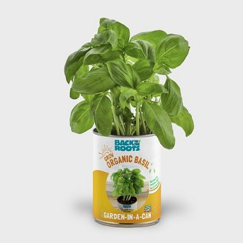 Herb Garden Kit Basil - Back to the Roots