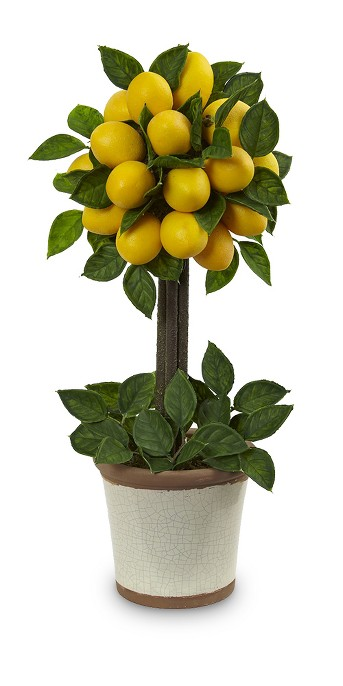 Lemon Ball Topiary Arrangement - Yellow