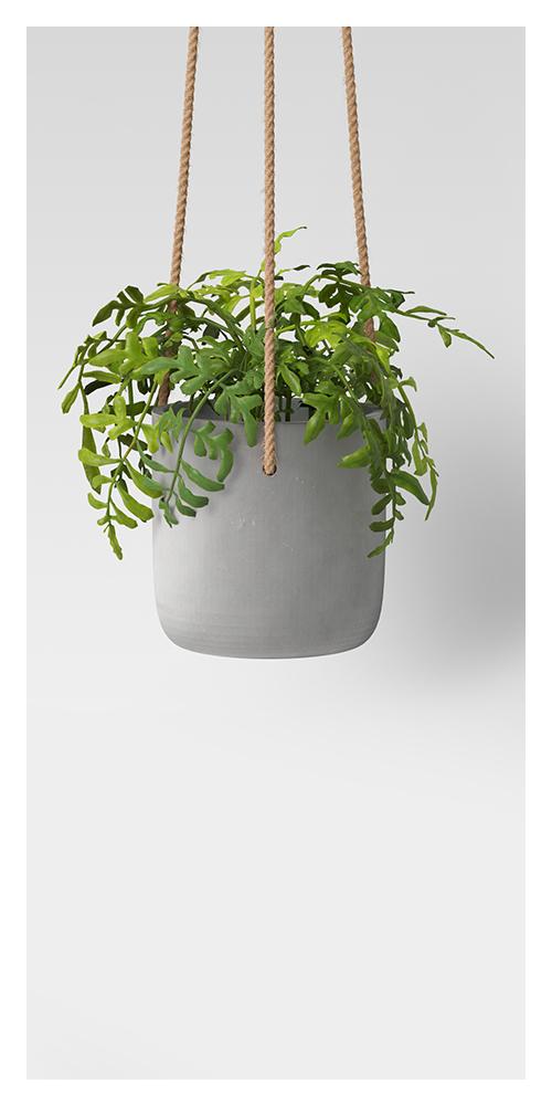 "6"" Concrete Hanging Planter Gray - Project 62™"